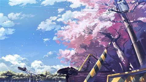 Anime Cherry Blossom Wallpaper - free anime cherry blossom background page 3 of