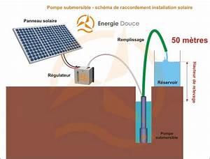 Schema Installation Pompe De Relevage Eaux Usées : kit solaire complet pompage 50 m tres 24 48 volts 160 watts ~ Carolinahurricanesstore.com Idées de Décoration