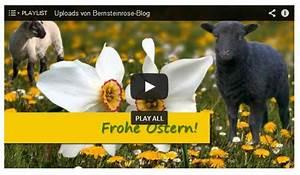 Ostergrüße Video Kostenlos : ostervideos mit musik kostenlose angebote f r das osterfest reisen mit mu e entspannt leben ~ Watch28wear.com Haus und Dekorationen