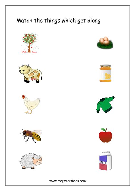 what we get from plants worksheet things we get from plants worksheet the best and most