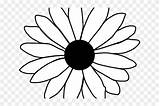 Flower Outline Daisy Coloring Single Pages Hd Emoji Pngfind Sun Wreath sketch template