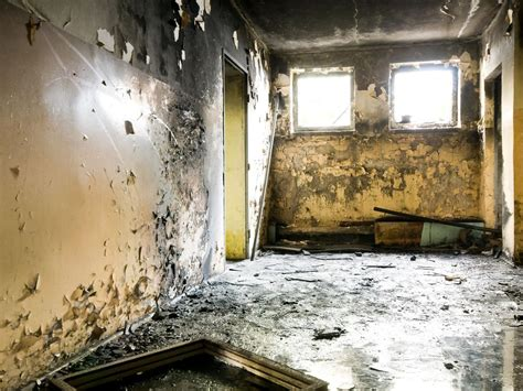 black mold symptoms  health effects home remodeling