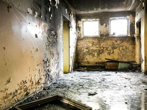 signs  toxic mold   home  business  arizona