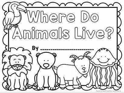 Habitats Animal Worksheets Printable Sorting Grade 1st