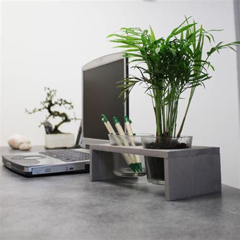 plantes de bureau comment bien choisir sa plante de bureau avec made in