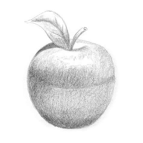apple sketch stock illustration illustration  fruit