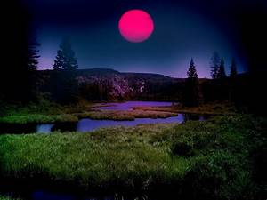 Beauthiful Romantic Sunset - XciteFun.net
