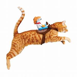Kitty Up Cowboy Cat Costume - The Green Head