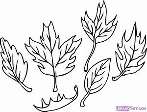 How to Draw Leaves, Step by Step, Trees, Pop Culture, FREE ...