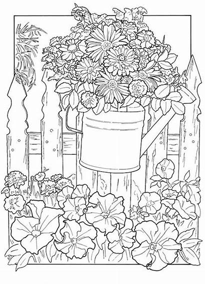 Garden Coloring Adults Advanced Colorers Credit