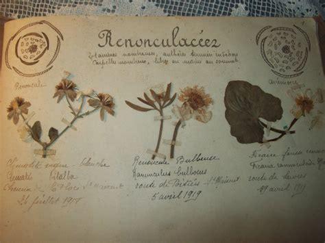 Romantique herbier ancien Le blog de tissus anciens