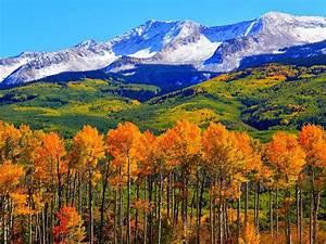 Autumn, Colorado, Fall, Snowy, Mountains, Nature, Landscape, Hd, Wallpaper, 1920x1200, Wallpapers13, Com