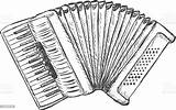 Accordion Sketch Instrument Adulation Object Equipment Single Istockphoto sketch template
