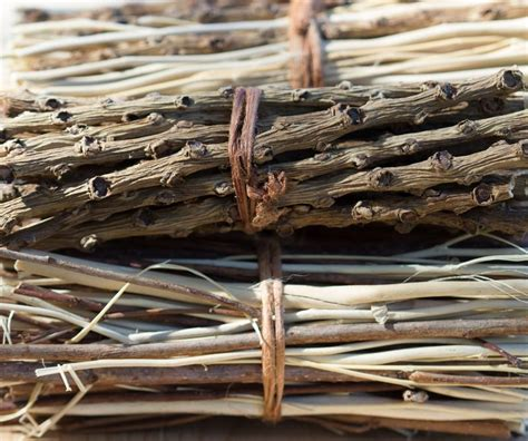 Race as a Bundle of Sticks - Getting Race Right