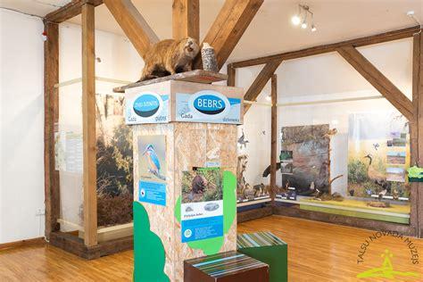 Stends 2020. gada dzīvnieks un putns - Talsu novada muzejs