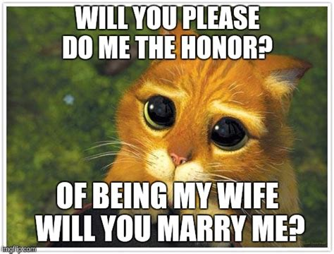 Marry Me Meme - shrek cat meme imgflip