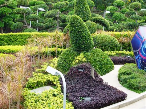 inexpensive backyard landscaping cheap and easy backyard landscaping ideas jen joes design cheap landscaping ideas for
