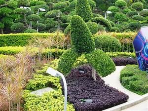 Cheap And Easy Backyard Landscaping Ideas — Jen & Joes