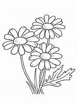 Coloring Pages Autumn Fall Daisy Flower Printable Flowers Dahlia sketch template
