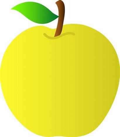 Apple Yellow Clipart Golden Clip Delicious Vector