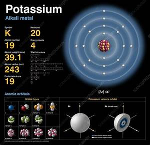 Potassium  Atomic Structure  3700