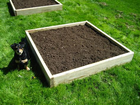raised bed soil calculator raised bed soil mix buy turf essex and turf suffolk