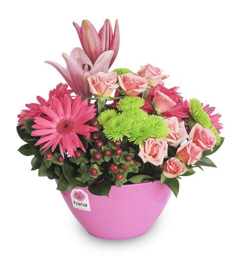 Color primavera (con imágenes) Flores Flores de colores