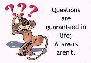 Funny Message Collection: Funny Question & Answers 1