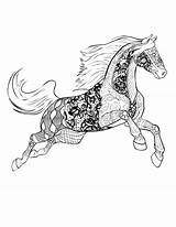 Coloring Horse Pages Adults Advanced sketch template
