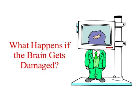 What Happens If The Brain Gets Damaged