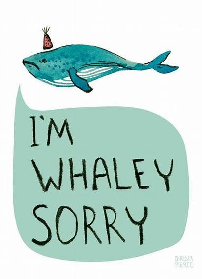 Sorry Cards Card Im Apology Gifts Whale