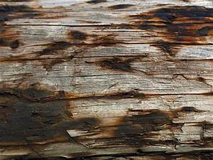 70 Amazing Free Textures for Commercial Use | PSDDude