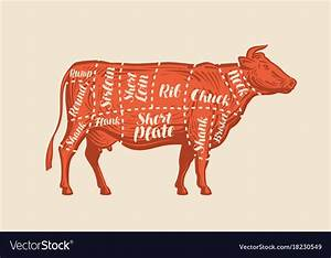 Meat Cut Charts Cow Butcher Shop Beef Royalty Free Vector