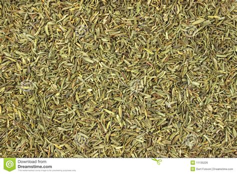 dried thyme close view of dried thyme royalty free stock image image 11135226