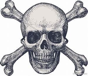 4-Designer | Skull illustrator 07 vector material