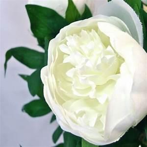 Bouquet Fleurs Blanches : bouquet de fleurs blanches bing images ~ Premium-room.com Idées de Décoration