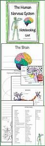 26 Best Grade 5 Science Images On Pinterest