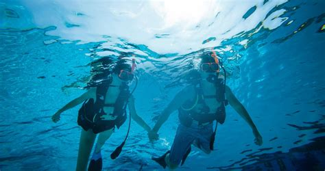 scuba diving resorts best caribbean dive trips vacations sandals