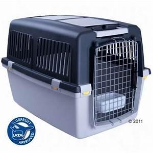 Grande Cage Pour Chien : cage de transport pour chien et chat gulliver ~ Dode.kayakingforconservation.com Idées de Décoration