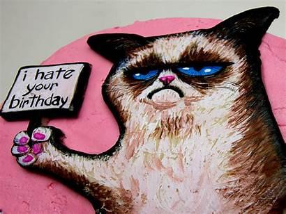 Meme Grumpy Cat Funny Birthday Humor Quote