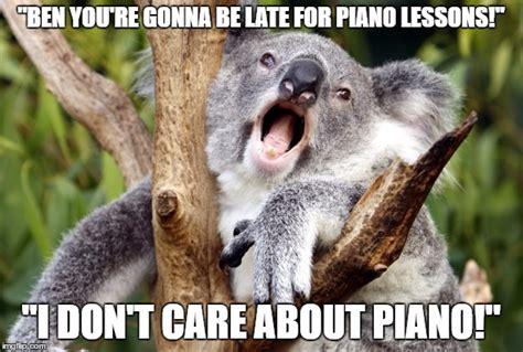 Koala Meme - funny koala bear meme www pixshark com images galleries with a bite