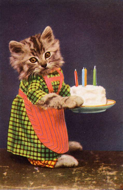 cat birthday postcard ahh lovedaylemon flickr