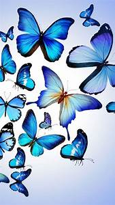 Butterfly Colorful Blue Drawing Art Beautiful #iPhone #6 # ...