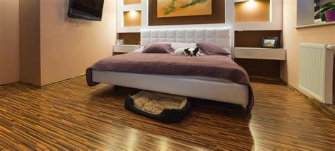 dogs  hardwood floors   mix