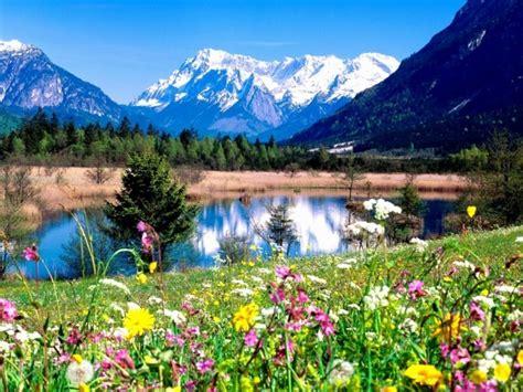 allee du bureau le plus beau paysage fleuri voyez les meilleures images