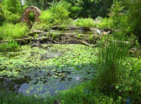 mercer arboretum and botanic gardens mercer arboretum and botanic gardens attractions all