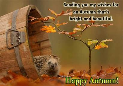Autumn Happy Wish Fall Greetings Greeting Cards
