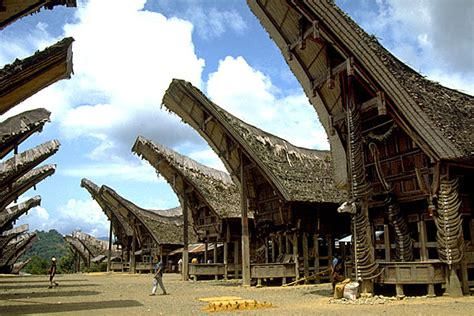 tana toraja villages sulawesi island pictures bizarre