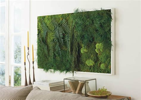stylish  contemporary interior greenery ideas