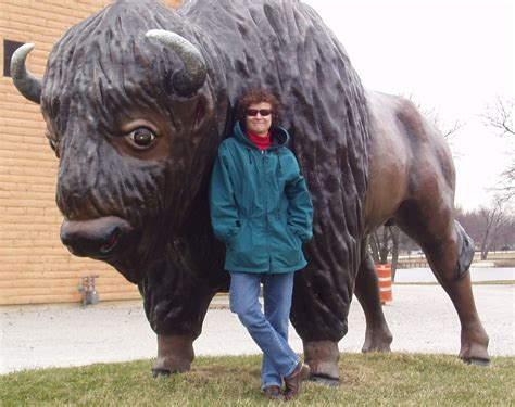 Latest Funny Pictures: Funny Bison